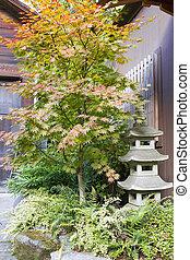 Japanese Maple Tree with Stone Pagoda Lantern
