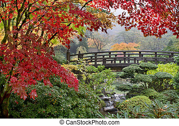 Japanese Maple Trees by the Bridge in Fall Foggy Morning