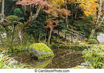 Japanese park in autumn