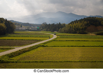 Japanese Rural Scene - Cultivated lands in Japan. Route from...