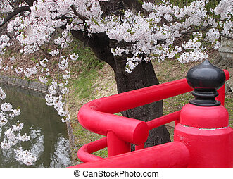 Japanese spring bridge