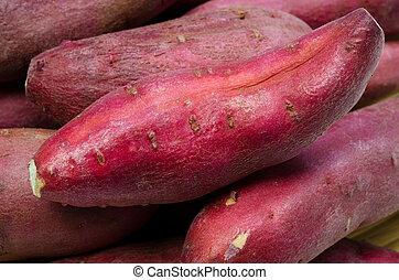 japanese sweet potato - Cooking ingredient series japanese...
