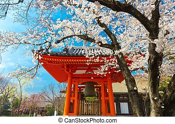 Japanese temple at spring