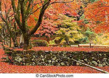 Japanese temple with maple tree
