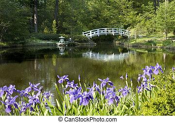 Japanese zen garden - Japanese Zen Garden with moon bridge...