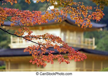japanisches , fallen farben