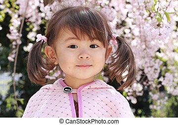 japanisches , m�dchen, und, kirschblüten, (2, jahre, old)