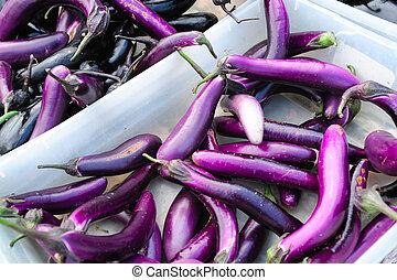 japanse aubergine