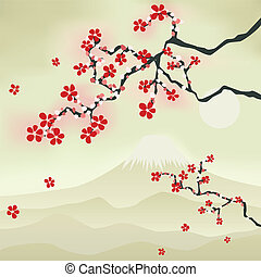 japansk, körsbär blomstra