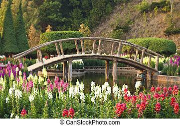 japonés, flor, style., jardín