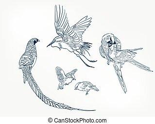 japonés, pájaro, estilo, elemento, pintura, bosquejo, diseño...