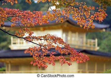 japonaise, couleurs chute