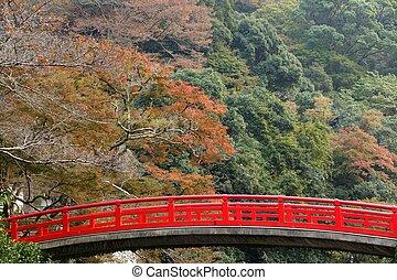 japonaise, pont, à, automne