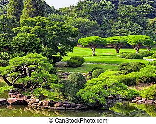 japoneses, parque, em, verão