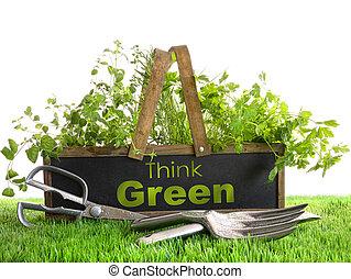 jardín, caja, con, surtido, de, hierbas, y, herramientas