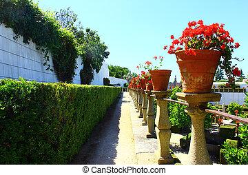 jardín, castelo, branco, portugal