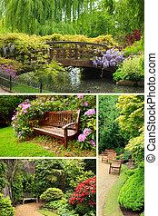 jardín, colección