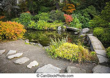 jardín japonés, en, otoño