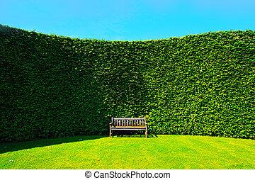 jardín, setos, con, un, banco