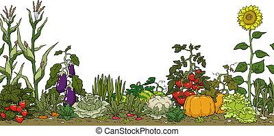 jardín vegetal, cama
