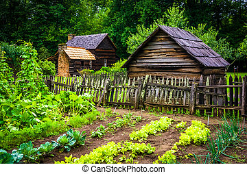 jardín vegetal, y, edificios, en, el, montaña, granja, museo, en, th