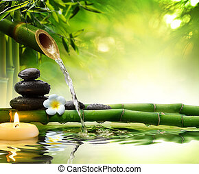jardim água, spa, pedras