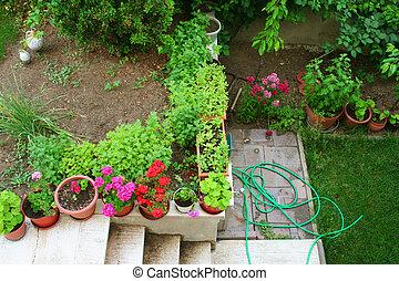 jardim, cheio, de, flores