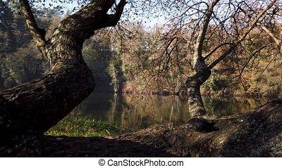 Jardim dos Poetas Garden, This small garden takes its name...
