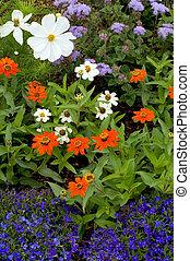 jardim, flores