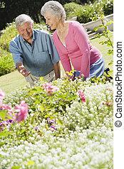 jardim, par, trabalhando, sênior