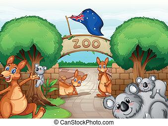 jardim zoológico, cena