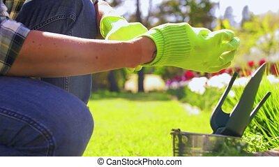 jardin, été, homme, boîte, outils, heureux
