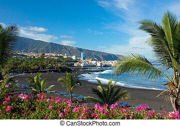 jardin, スペイン, playa, tenerife