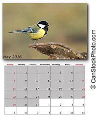 jardin, 2016, oiseaux, mai, calendrier