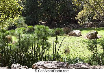 jardin, biblique, zoo, vert, jérusalem, pré