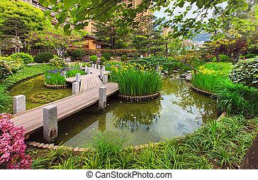 jardin, cote, vue, azur, monaco