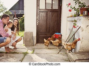 jardin, famille, heureux