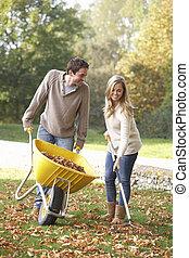jardin, feuilles, jeune, automne, ratisser, couple