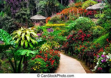 jardin fleur, coloré, fleur, aménagé, paisible