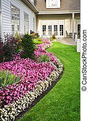 jardin fleur, coloré