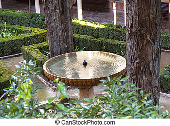 jardin, grenade, andalousie, espagne, alhambra, fontaine