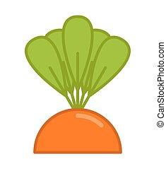 jardin, isolated., lit, carotte, légume, grandir