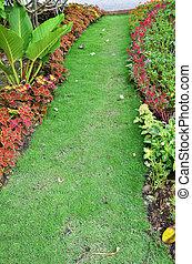 jardin, manière, promenade