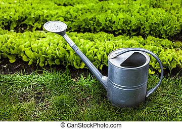jardin, photo, arrosage, métal peut, herbe