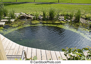 jardin, piscine