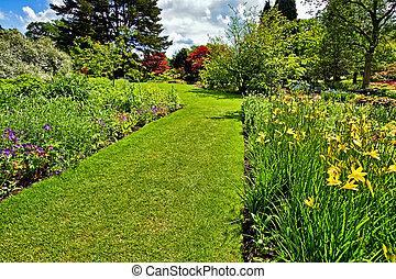 jardin, printemps, landscaping