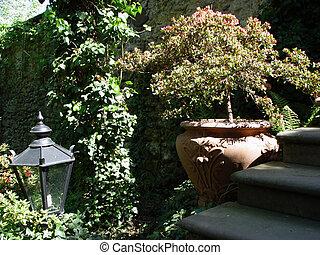 jardin, scène