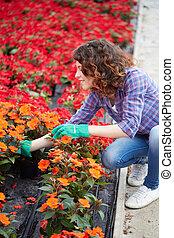 jardinage, gens