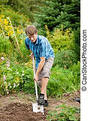 jardinage, sol, sur, -, creuser, homme