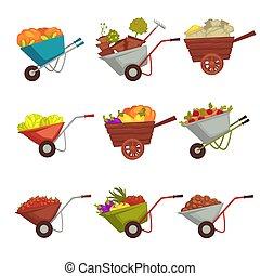 jardinagem, vetorial, colheita, carrinho de mão